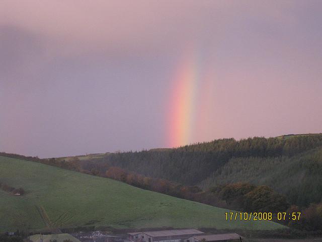 rainbowmorningmist